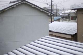 3年ぶりの積雪です。
